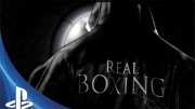 realboxing